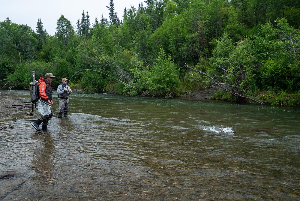 Trout Fishing at Kulik Lodge