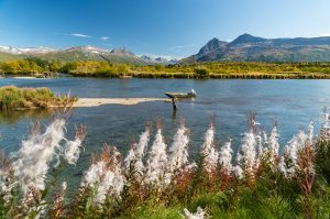 Kulik Lodge fly fishing Kulik River